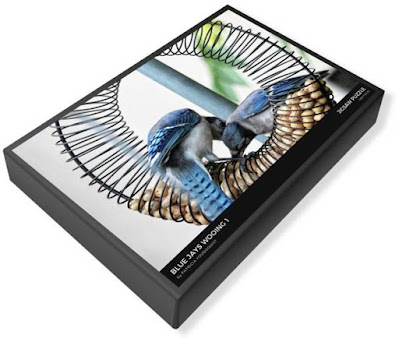 "This image of my puzzle's (""Blue Jays Wooing 1"") packaging is from Fine Art America @ https://fineartamerica.com/featured/blue-jays-wooing-1-patricia-youngquist.html?product=puzzle&puzzleType=puzzle-20-28"