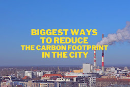 Biggest ways to reduce carbon footprint in the city