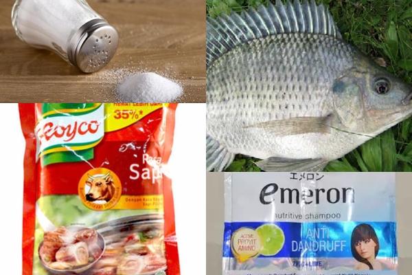 Umpan Ikan Nila Susah Makan Di Spot Mancing Liar