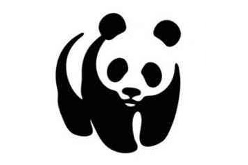 Job Programme Accountant at World Wide Fund For Nature (WWF)