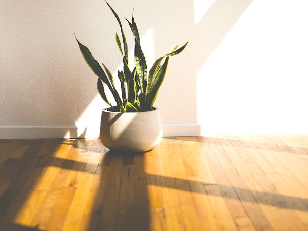 Update Your Home With New Flooring