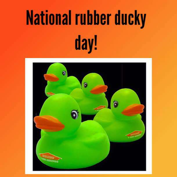 National Rubber Ducky Day Wishes Pics