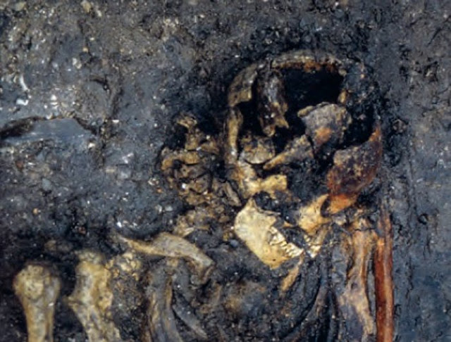 DNA testing sheds light on old Viking murder mystery