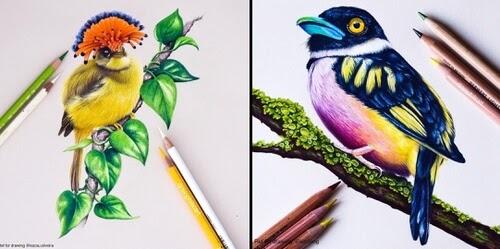00-Animal-Drawings-Sallyann-www-designstack-co