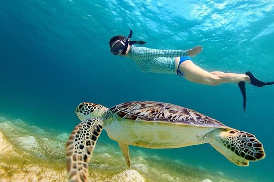 Wisata Gili Kedis Surga Kecil di Pulau Lombok