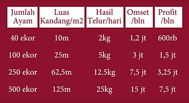 Tabel Perbandingan Luas Kandang, Ayam, Telur dan Hasil Jual Telur