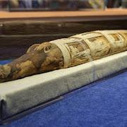 Археологи нашли мумию гигантского крокодила