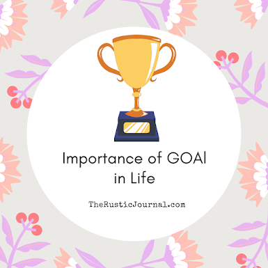 Importance of GOAl in Life
