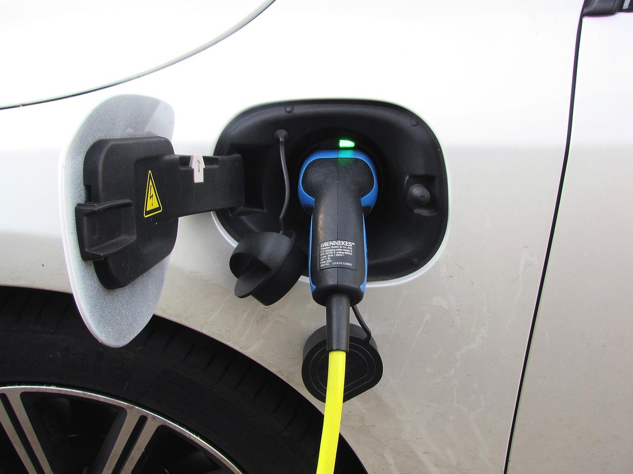 coches eléctricos 2019 precios