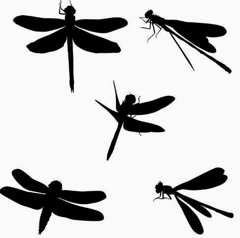 51 BEST DRAGONFLY TATTOOS DESIGNS AND IDEAS (2019)