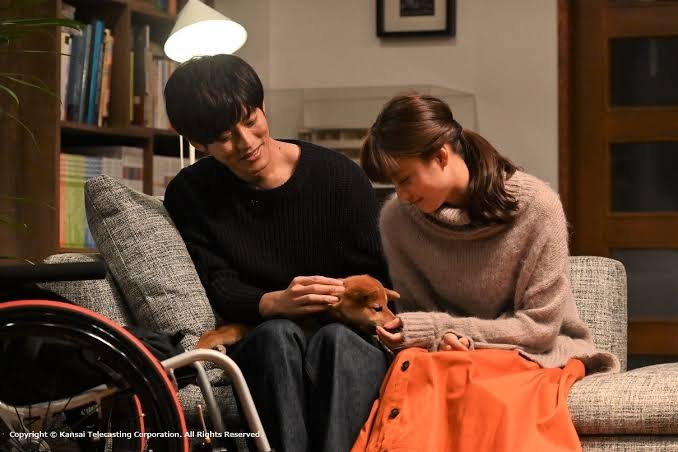 review dorama perfect world