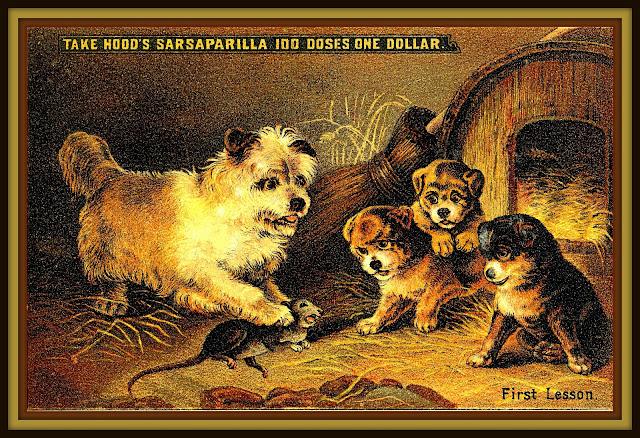 "Hood's Sarsaparilla advertising trade card: ""First Lesson"""