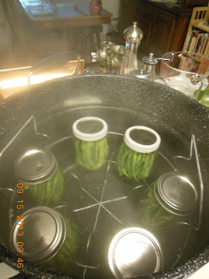 How to make Pickled Green Beans.