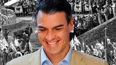 PSOE, eta, asociaciones, homenajes, ayudas, dinero, etarras