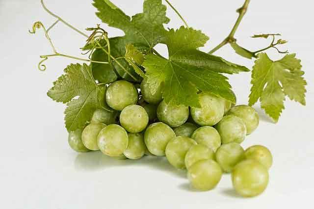 هل العنب مسموح في الكيتو دايت