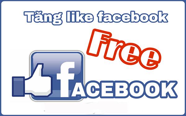 tang like fanpage facebook