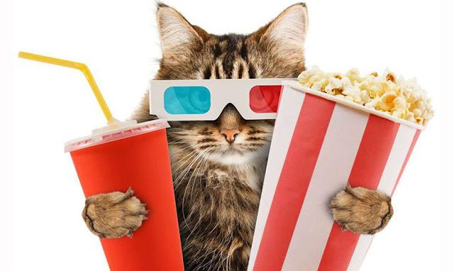 kenapa popcorn menjadi makanan populer di bioskop?