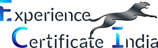 Genuine Experience Certificate Provider