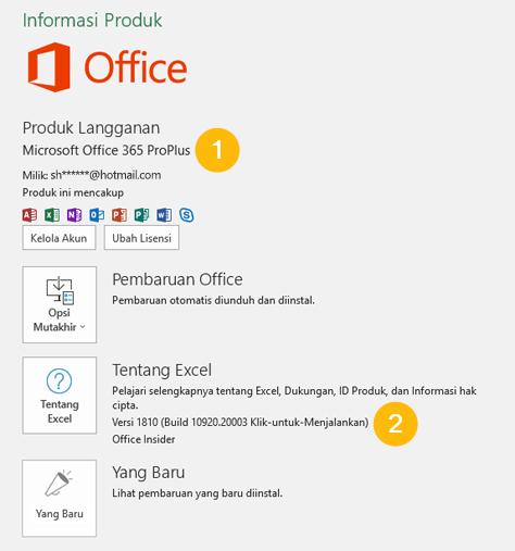 cara mengetahui versi office 365