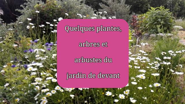 Quelques plantes, arbres et arbustes du jardin devant la maison ((vidéo)