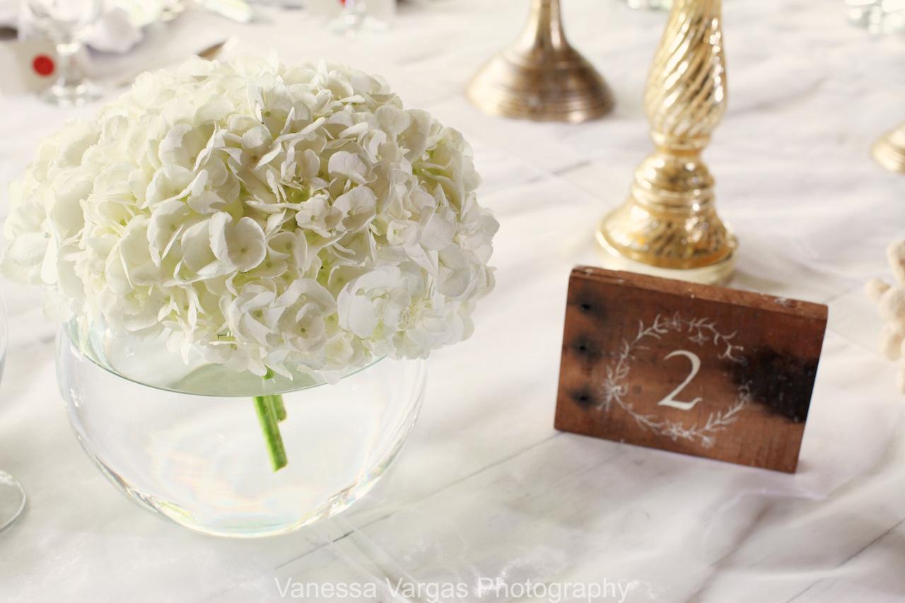Benjamin and Christina | Isabela Wedding