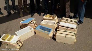 السودان تحبط عملية تهريب لكميات كبيرة من الذهب بطائرة خاصة