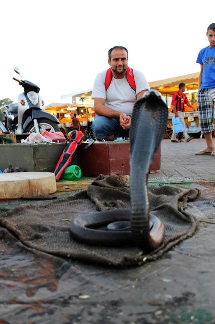 Encantadores de cobras