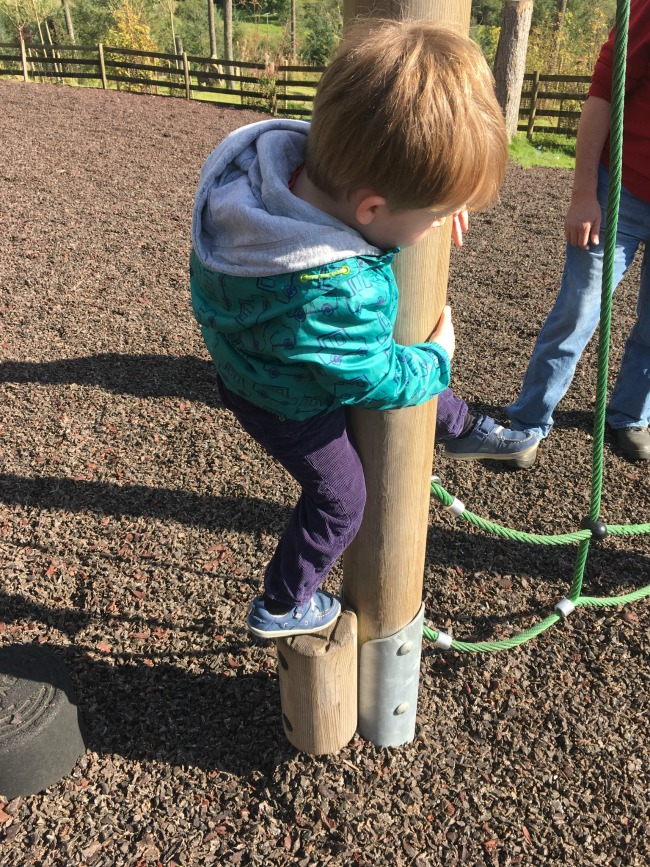 boy-on-adventure-playground-at-garwnant-holding-onto-pole-to-get-over-obstacle