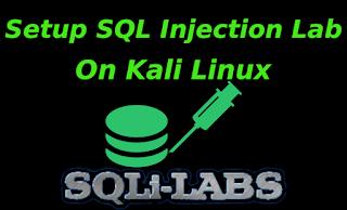 install sqli lab on Kali Linux
