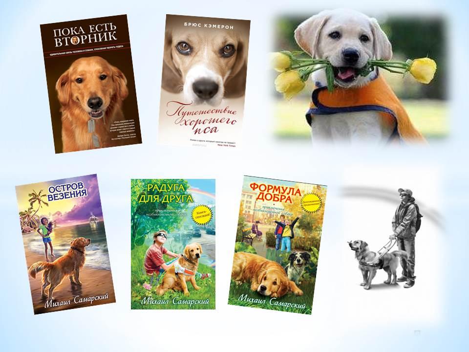 Новые книги по воспитанию собак