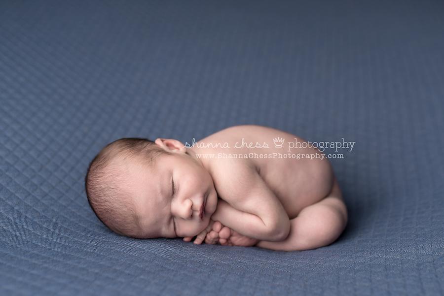 springfield oregon newborn photographer