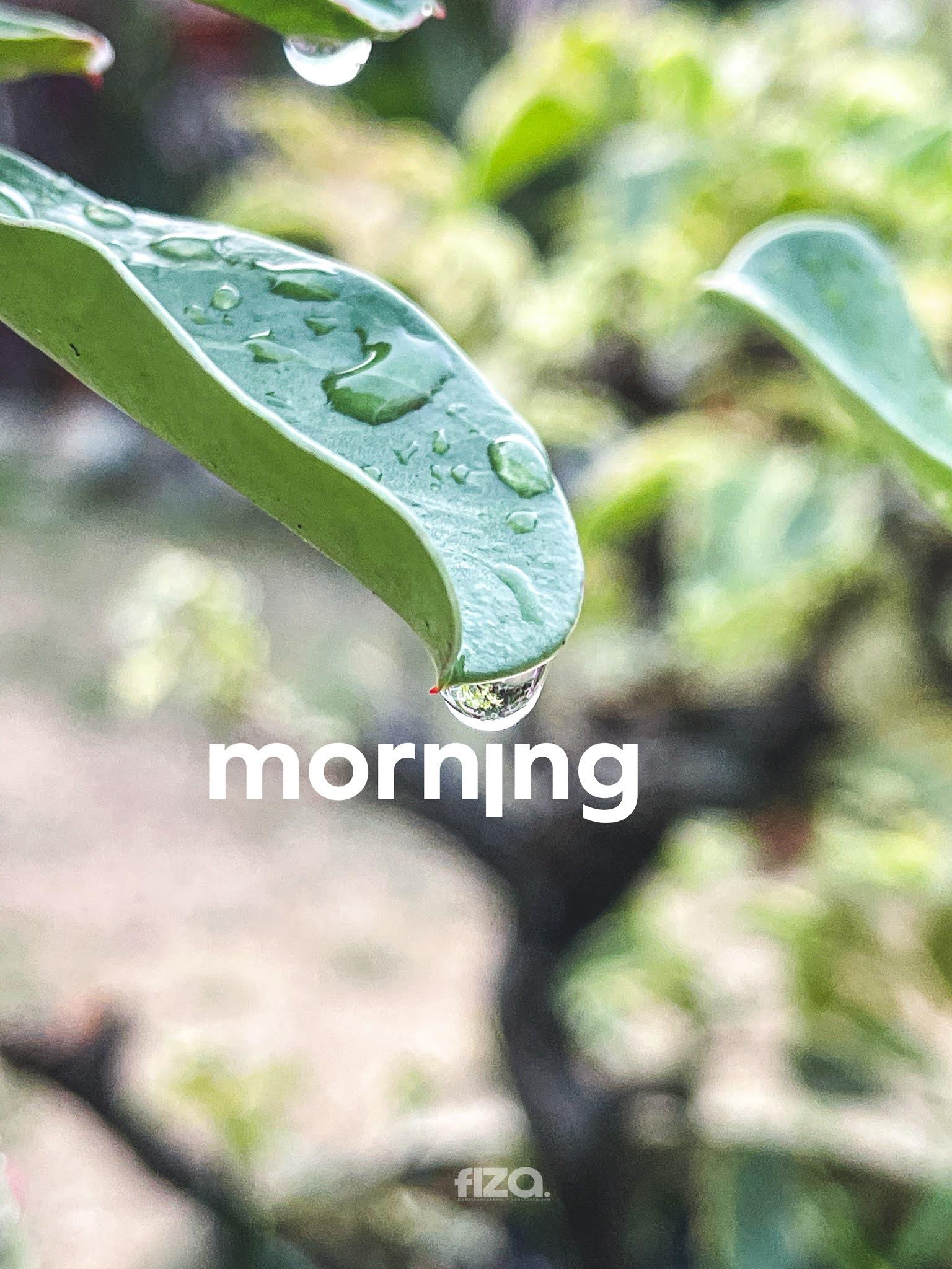 Embun pagi