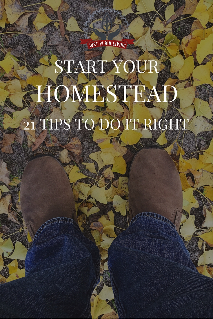 Start your homestead off on the right foot. Learn from our mistakes with these tips!
