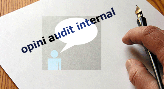 opini audit internal