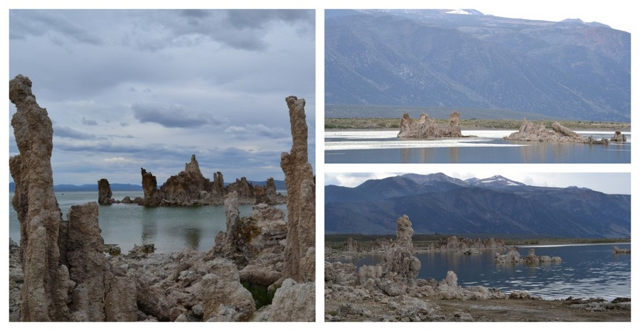 Nature sauvage à Mono Lake