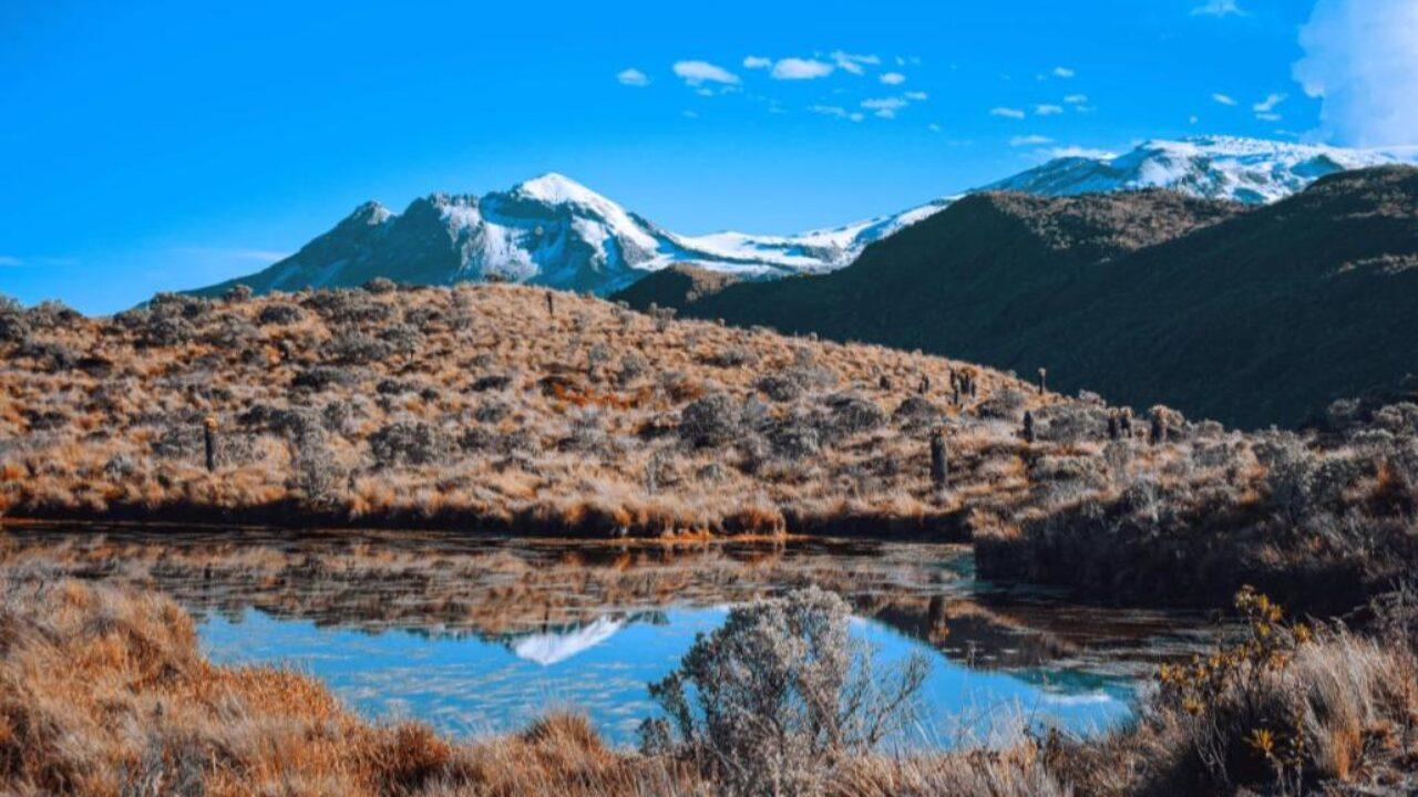 Corte ordenó al Gobierno recuperar el Parque Los Nevados