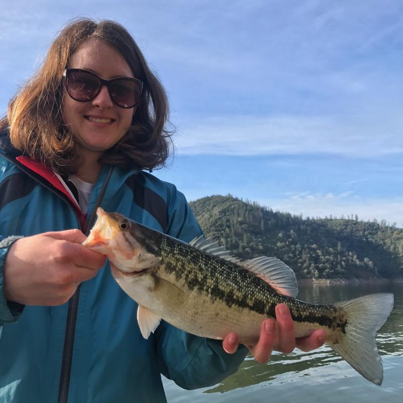 Fly fishing specialties northern california fly fishing for Lake oroville fishing report