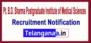 PGIMS Pt. B.D. Sharma Postgraduate Institute of Medical Sciences Rohtak Recruitment Notification 2017 Last Date 12-06-2017