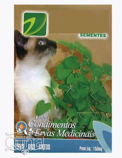 Sementes de erva de gato