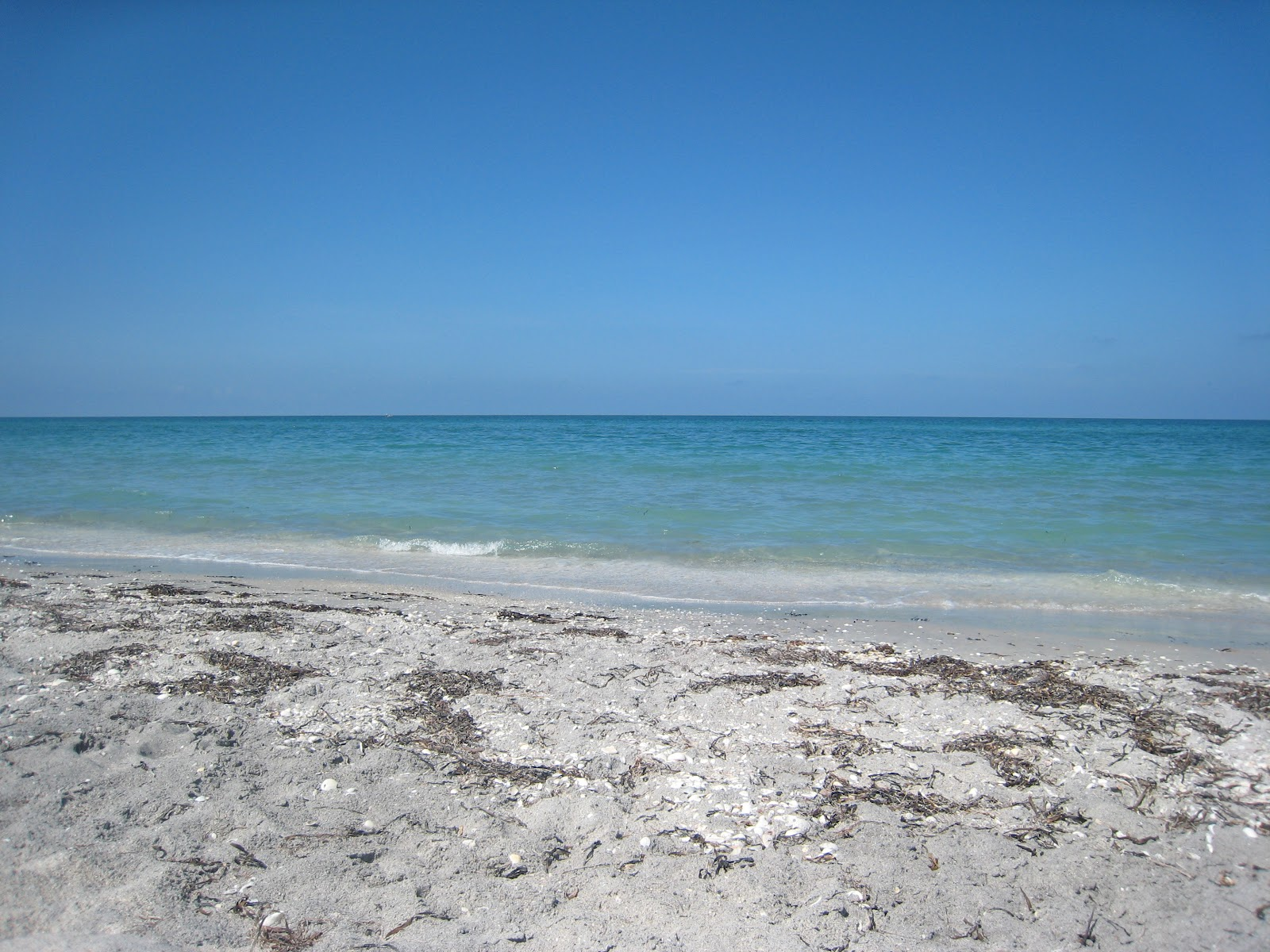 Englewood Beach   Mommy Life in Florida Paradise