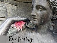 http://holunder.blogspot.de/2017/05/eye-poetry-04-zeigt-doch-mal-her.html