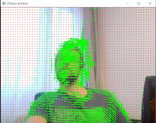 Opencv OpticalFlow