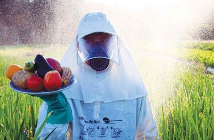 Toma lhe veneno Brasil: Governo vai liberar agrotóxicos que não for analisado em até 60 dias
