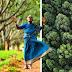 """La """"madre de los bosques"""" ha plantado más de 8 mil árboles durante 80 años"""