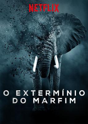 O Extermínio do Marfim – WEBRip 720p e 1080p Dual Áudio (2016)