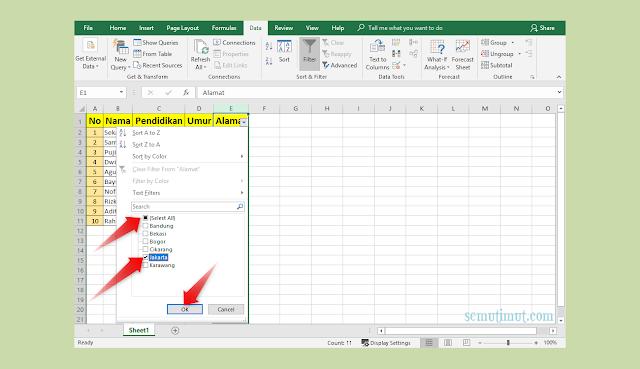 Cara Mengelompokkan Data di Excel 2007