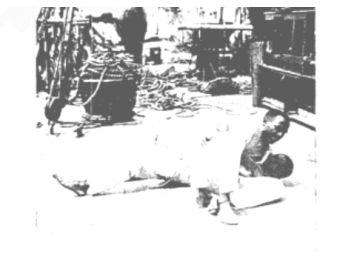 Quem trouxe o Jiu Jitsu ao Brasil foi Sada Miyako e não Maeda.