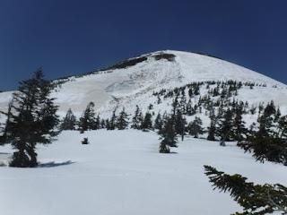 仙人岱から大岳南斜面の全層雪崩跡を見る