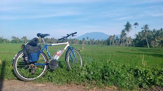 Pemandangan Desa Wiyayu Songgon