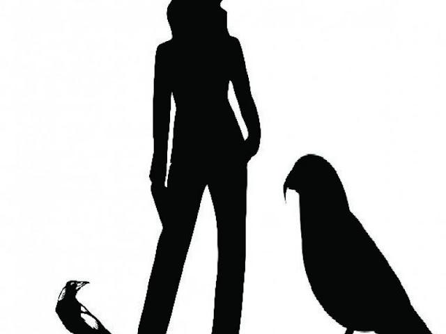 Un loro del tamaño de un avestruz vivió hace 19 millones de años